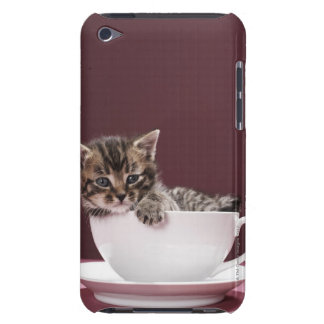 Kitten in cup and saucer Case-Mate iPod touch case