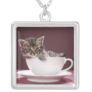 Kitten in cup and saucer square pendant necklace