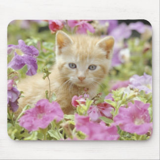 Kitten in flowers mouse mat