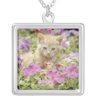 Kitten in flowers silver plated necklace