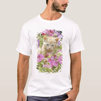 Kitten in flowers T-Shirt