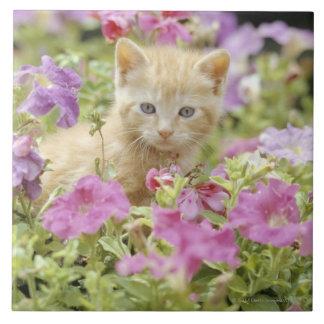 Kitten in flowers tile