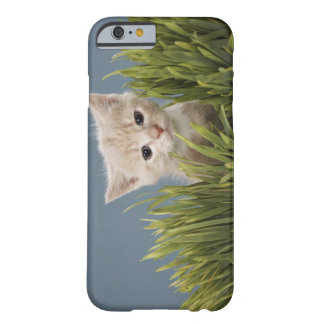 Kitten in grass barely there iPhone 6 case