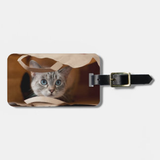 Kitten in Grocery Bag Luggage Tag