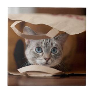 Kitten in Grocery Bag Tile