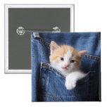 kitten in jeans bag 15 cm square badge