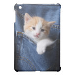 kitten in jeans bag cover for the iPad mini