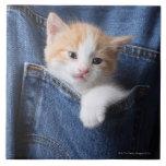 kitten in jeans bag large square tile