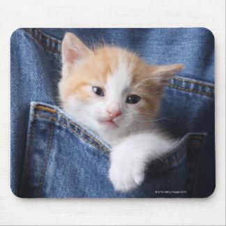 kitten in jeans bag mouse mat