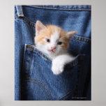 kitten in jeans bag print