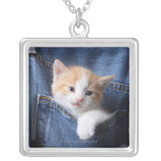 kitten in jeans bag silver plated necklace