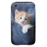 kitten in jeans bag tough iPhone 3 covers