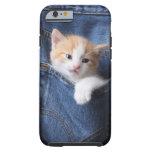 kitten in jeans bag tough iPhone 6 case