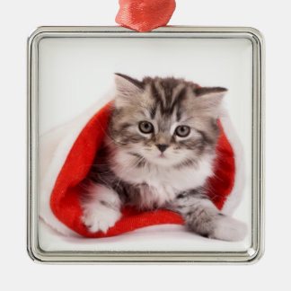 Kitten in Santa Hat Christmas Ornament