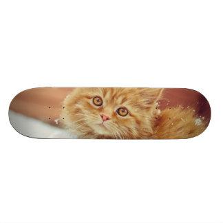 Kitten In Snow Skate Deck