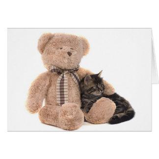 kitten in the arms of a teddy bear carte