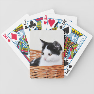 Kitten in the basket card deck
