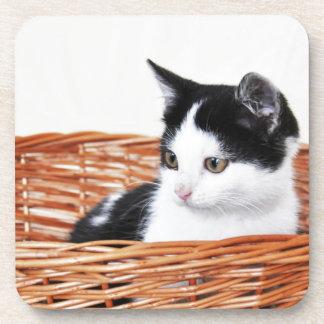 Kitten in the basket drink coaster