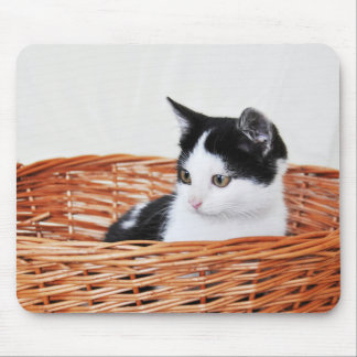 Kitten in the basket mouse pads