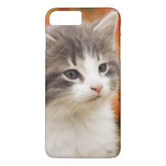Kitten In The Fall iPhone 8 Plus/7 Plus Case