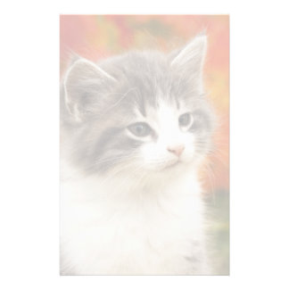 Kitten In The Fall Stationery