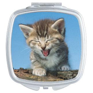 Kitten In Tree Vanity Mirrors