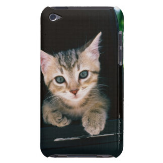 Kitten inside of mailbox Case-Mate iPod touch case