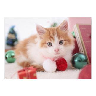 Kitten 13 Cm X 18 Cm Invitation Card