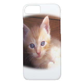 Kitten iPhone 8/7 Case
