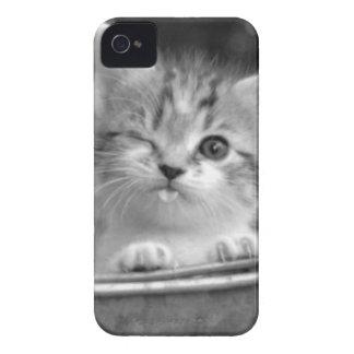 Kitten iPhone Case Case-Mate iPhone 4 Cases