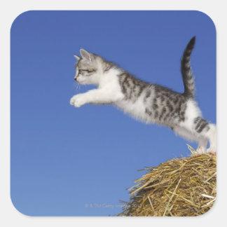 Kitten Jumping 2 Square Sticker