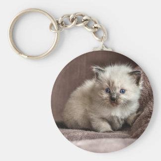 Kitten Keyring