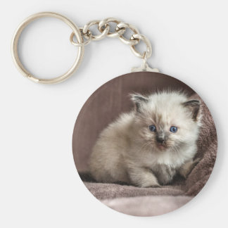 Kitten Keyring Basic Round Button Key Ring