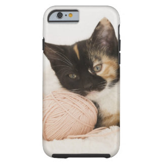 Kitten laying on ball of string tough iPhone 6 case