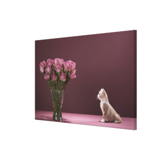 Kitten looking at vase of roses canvas print