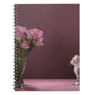 Kitten looking at vase of roses notebook
