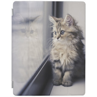 Kitten Looking Out Window iPad Smart Cover