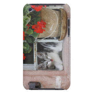 Kitten Looking Out Window iPod Touch Case-Mate Case