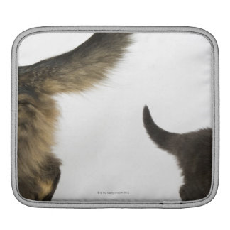 Kitten Looking up at its Mother's Tail iPad Sleeve
