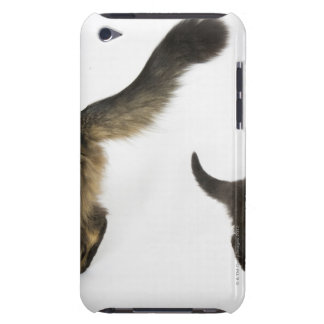 Kitten Looking up at its Mother's Tail iPod Touch Cases