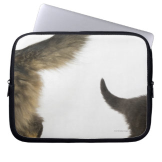 Kitten Looking up at its Mother's Tail Laptop Sleeve
