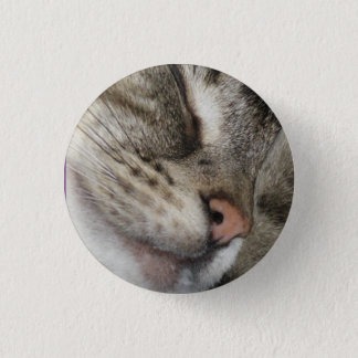 kitten love 3 cm round badge