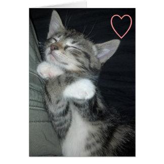 Kitten Love Greeting Card
