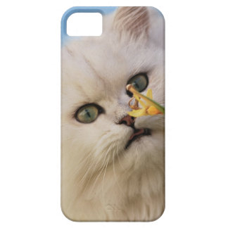 Kitten loving the daffodil case for the iPhone 5
