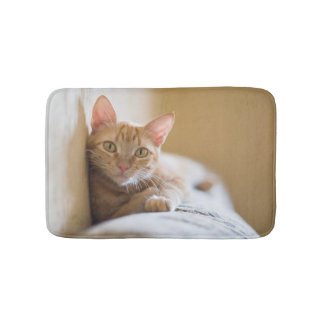 Kitten Lying On The Couch Bath Mat