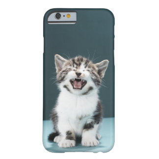 Kitten meowing barely there iPhone 6 case