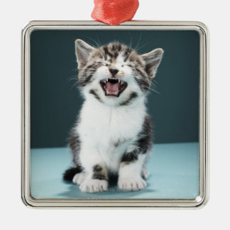 Kitten meowing christmas ornament