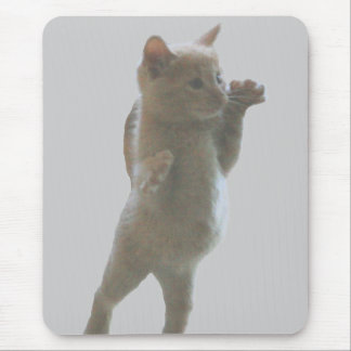 Kitten Mouusepad Mouse Pad