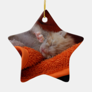 Kitten Newborn- Fully Customisable Ceramic Star Decoration