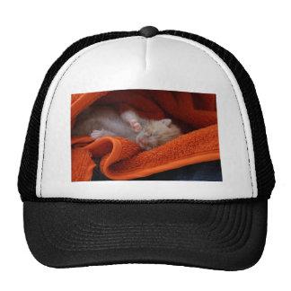 Kitten Newborn- Fully Customisable Trucker Hats